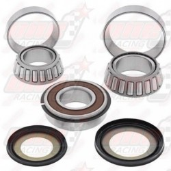Kit roulement de direction All Ball Racing pour Triumph Daytona 1000 (91-93) Daytona 750 (91-93) Daytona 900 (95-96)