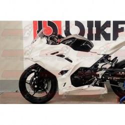 Carénage racing fibre Plastic Bike pour Kawasaki Ninja 400 (2018-2019)