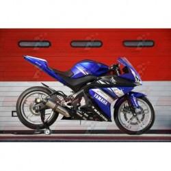Coque arrière racing fibre Plastic Bike pour Yamaha YZF 125R (2014-2018)