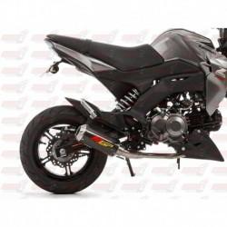 Ligne MGP Exhaust avec silencieux finition Carbone/Inox pour Kawasaki Z125 (2016)