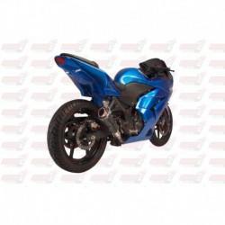 Passage de roue Hotbodies couleur Passion Red (26) avec clignotants leds pour Kawasaki Ninja 250R (2008-2012)